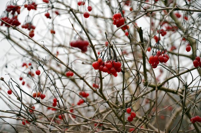 winterwochenende-1